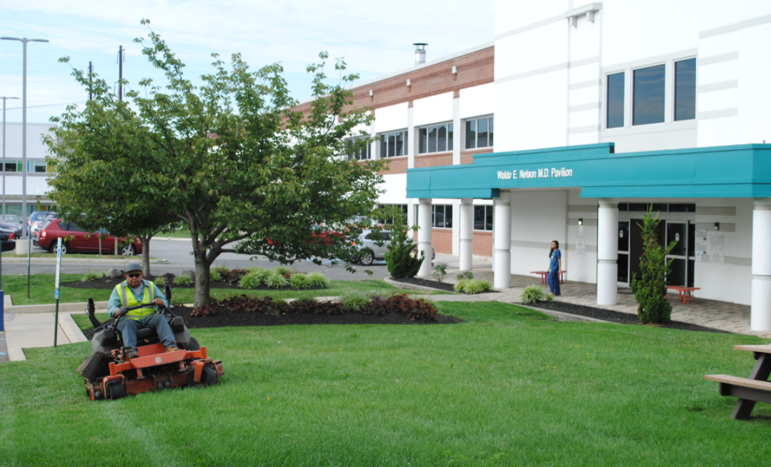 Commercial Landscaping Maintenance Cost – Cutting Costs With These Simple Tips