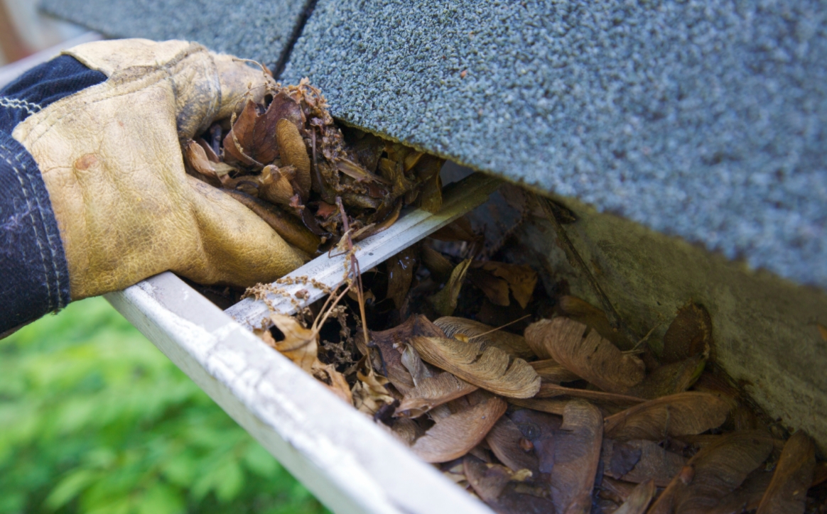 Gutter Cleaning – Selecting the Right Tools