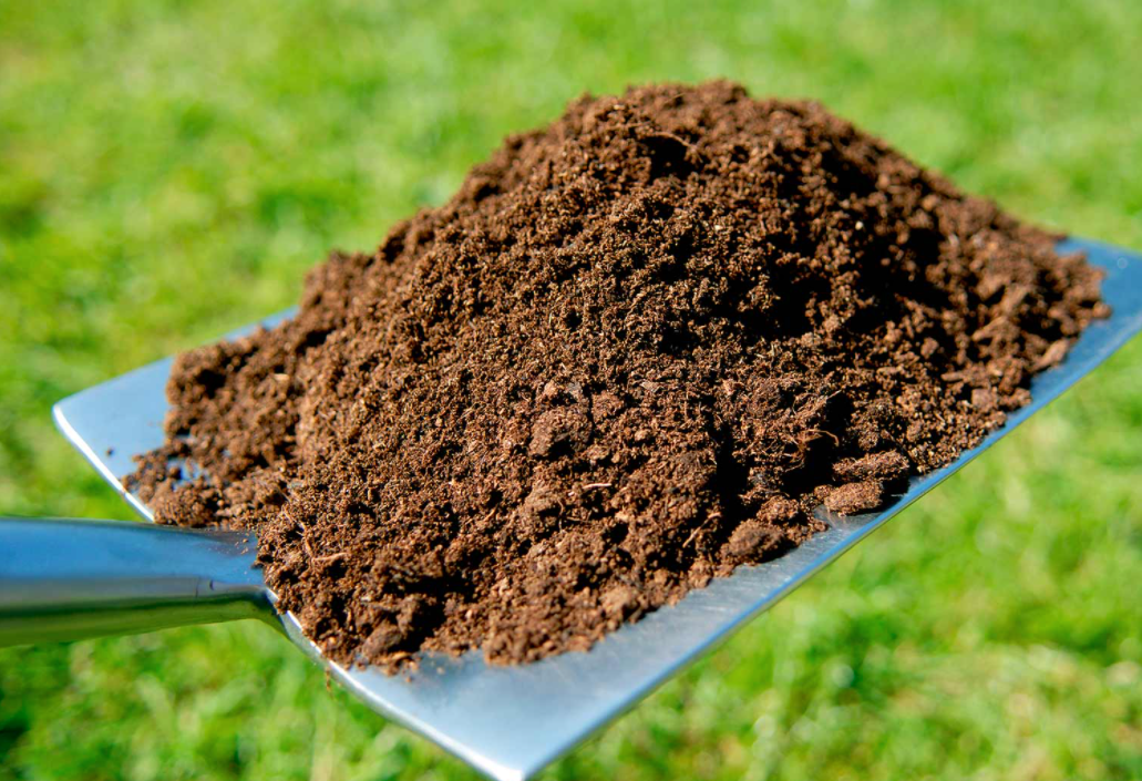 Benefits of Topdressing Soil